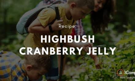Highbush Cranberry Jelly Is Amazing