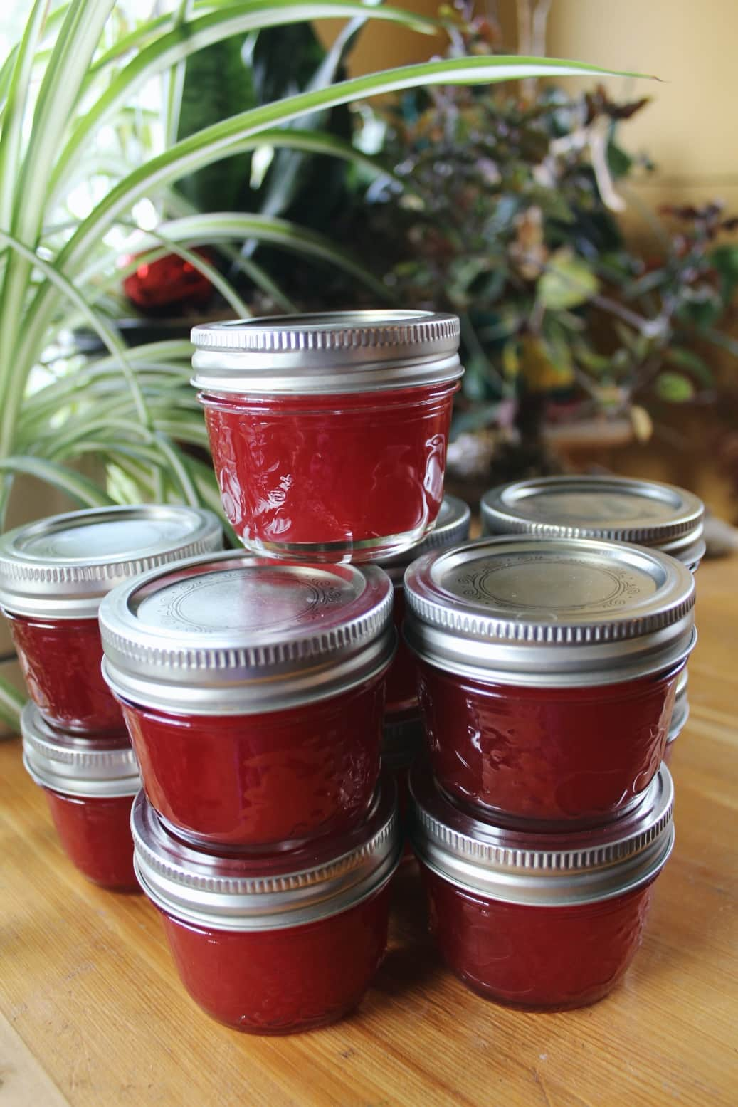 Highbush cranberry jelly in small jars
