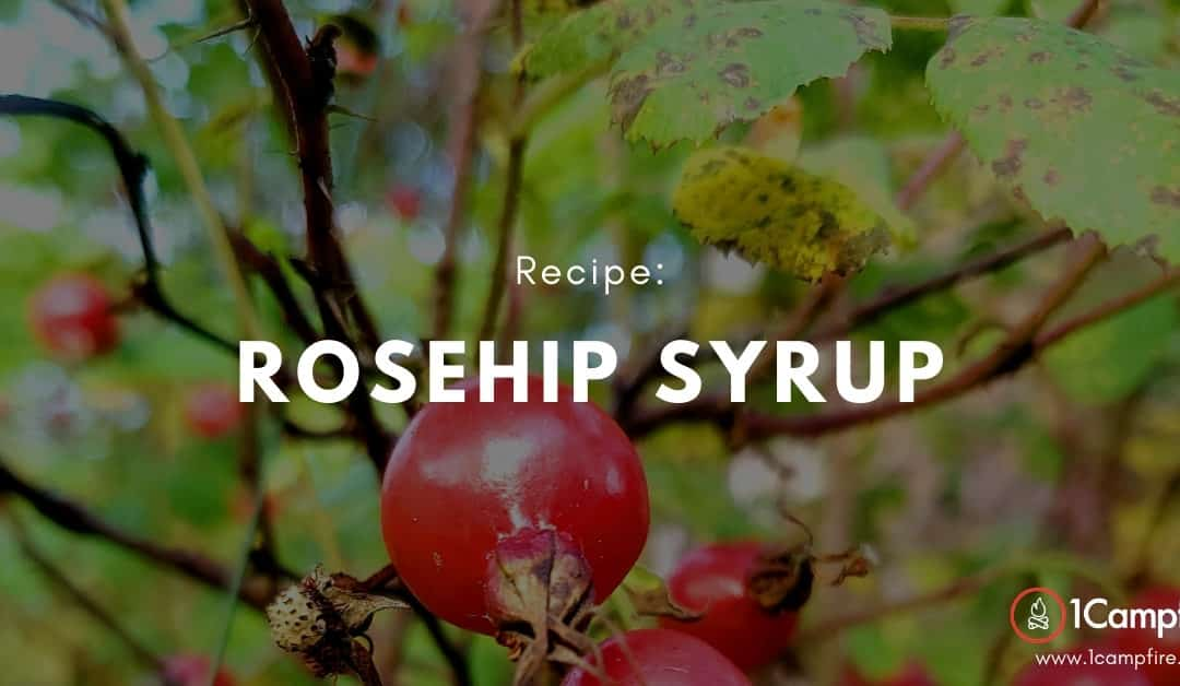 A Fall Inspired Rosehip Syrup Recipe