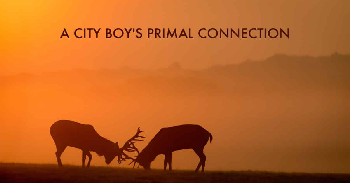 A City boy's primal connection