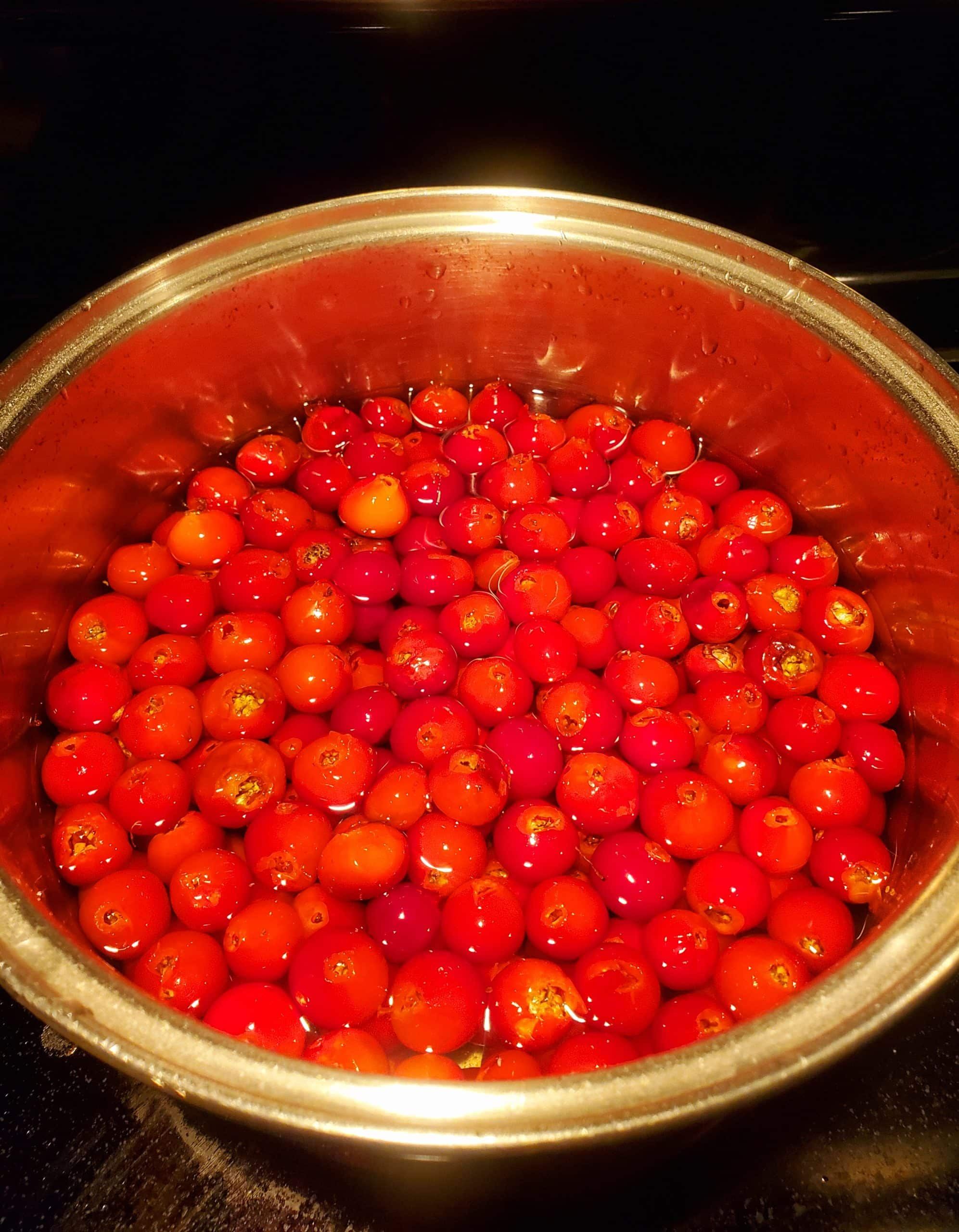 A large of bowl of highbush cranberries